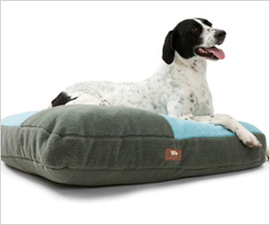 Comfy and cute dog beds