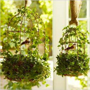 Ivy Birdcage