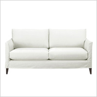 Masculine, modern couch
