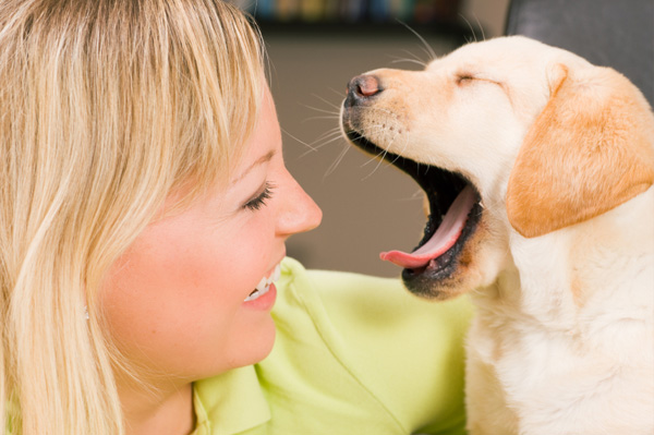 Woman looking at her yawning puppy