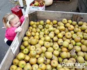 Shop local- Farmers market