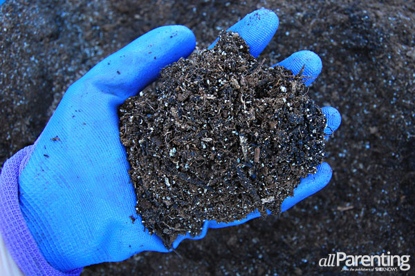 allParenting square foot gardening- mix soil