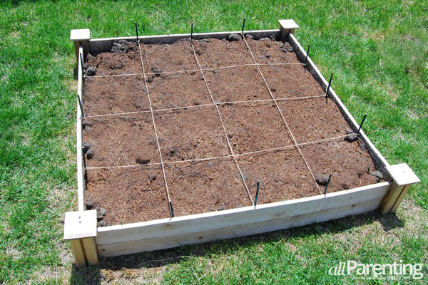 allParenting square foot gardening- prep the beds