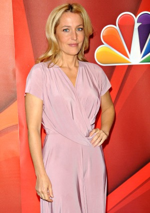 Reddit users play AMA with Gillian Anderson