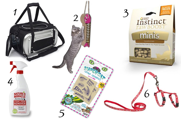 12 items to pack when you travel with your cat