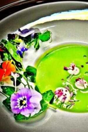 Chef Graham Elliot's Spring Pea Essence