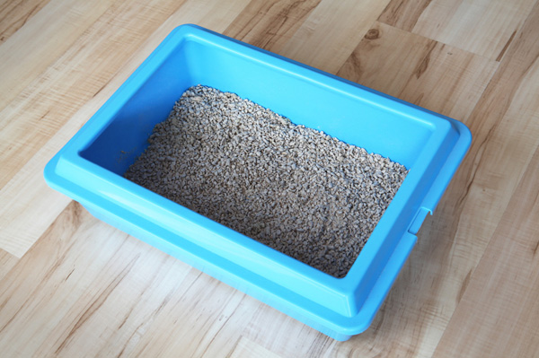 Unusual uses for  kitty litter