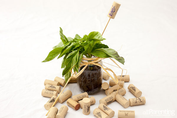 Wine cork plant marker