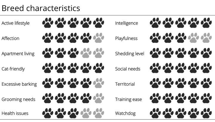 collie breed characteristics