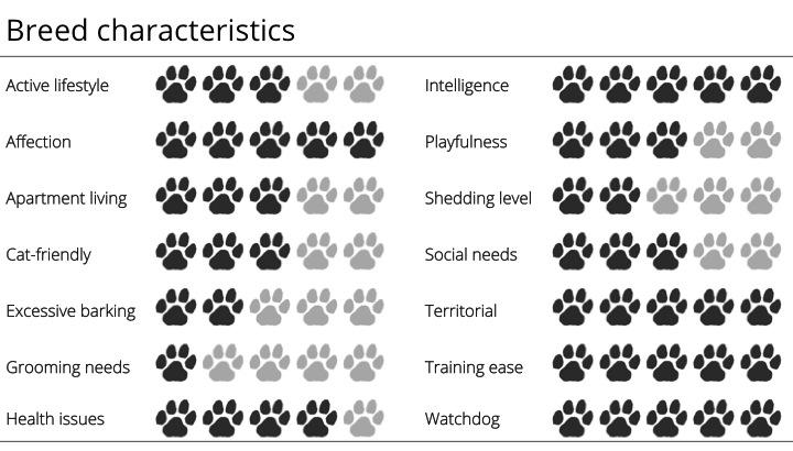 doberman breed characteristics