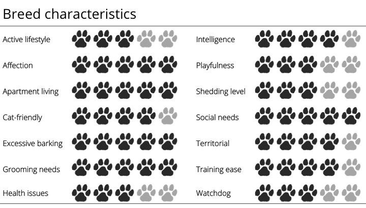 pomeranian breed characteristics