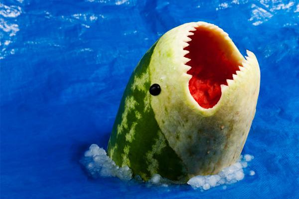 watermellon shark
