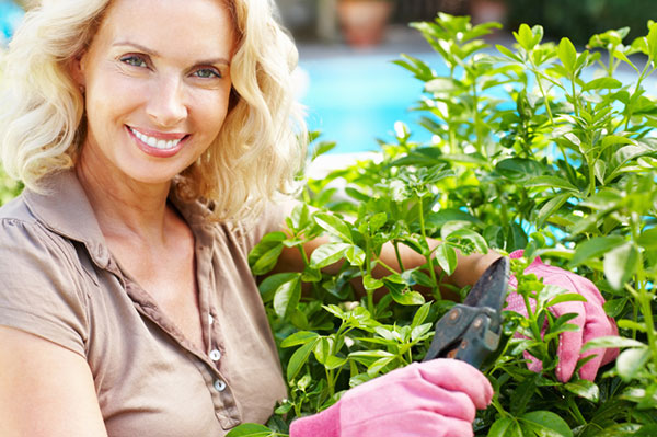 Best fall gardening tips