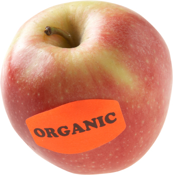 purchasing organic foods online india