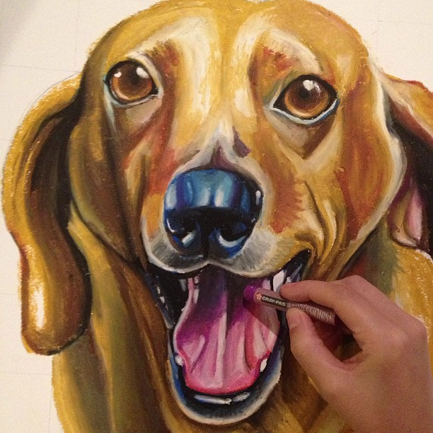 Paint my pooch