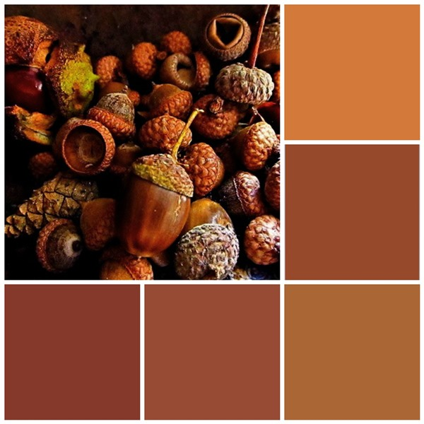 12 Fall Color Palettes For Your Kitchen