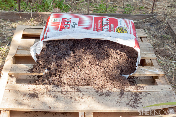 Pour potting soil on pallet