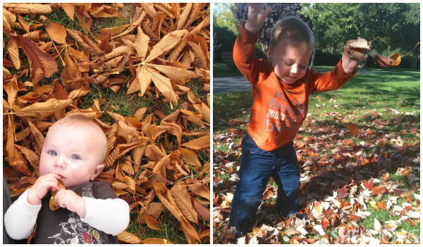 Tonya Adams' son - Kids playing in fall leaves
