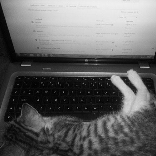 Laptop lazy