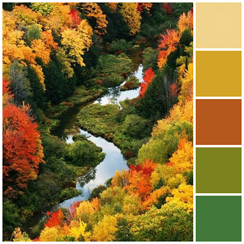 Fall Color Scheme Captivating With Green & Yellow Color Scheme Images