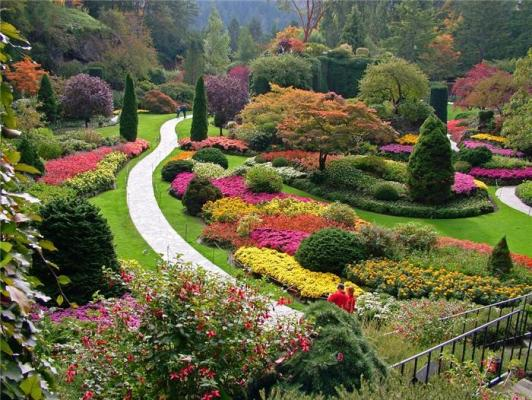 7 Our favorite fall gardens of all time