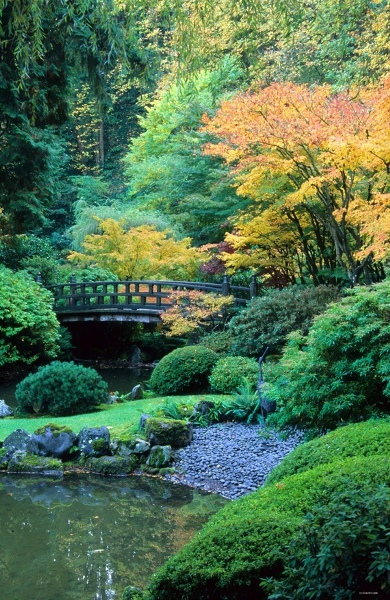 10 Our favorite fall gardens of all time