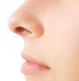 woman's nose close-up