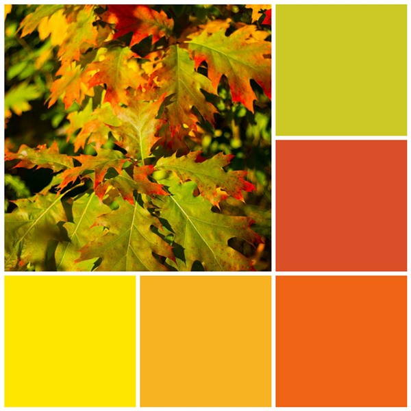 12 Fall Color Palettes For Your Kitchen on Casual Neutral Living Room