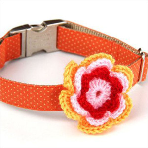 Crocheted dog collars