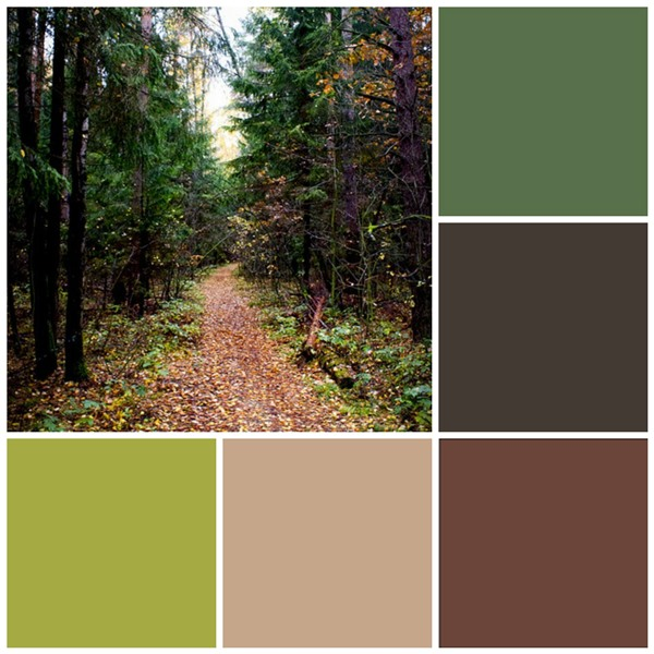 12 Fall color palettes for your kitchen : enchanted forest from www.sheknows.com size 600 x 600 jpeg 169kB
