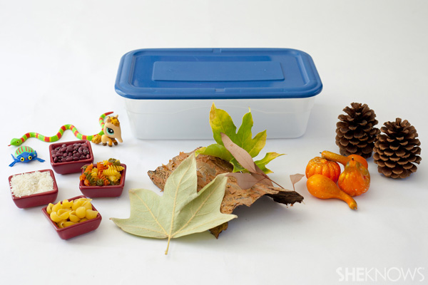 Welcome autumn with your child's senses