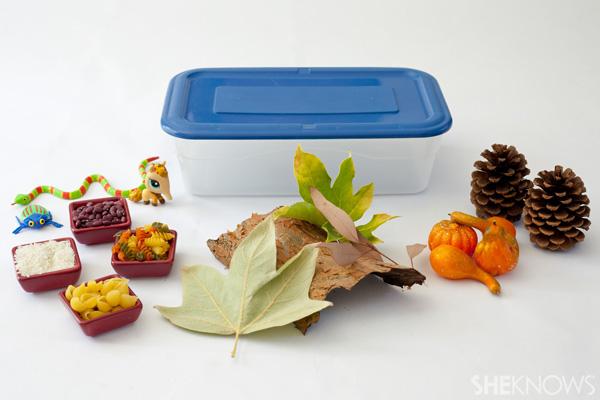 Fall sensory box materials