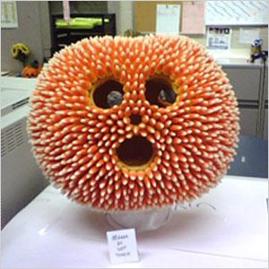 Prickly pumpkin