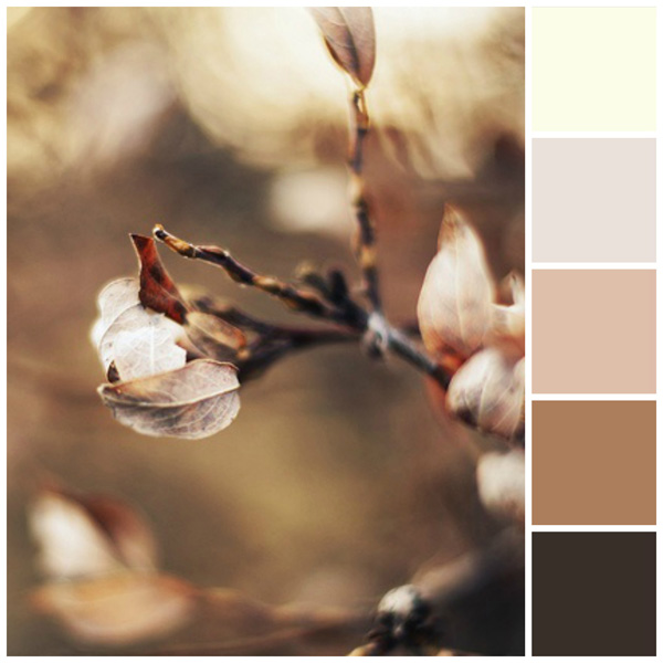 Fall color palette: Neutrals and naturals