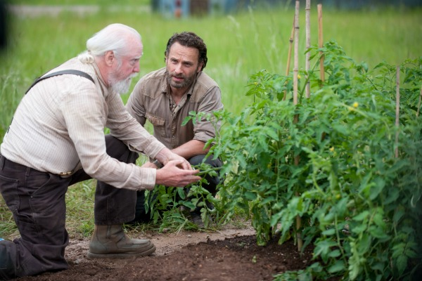 The Walking Dead - Rick and Hershell