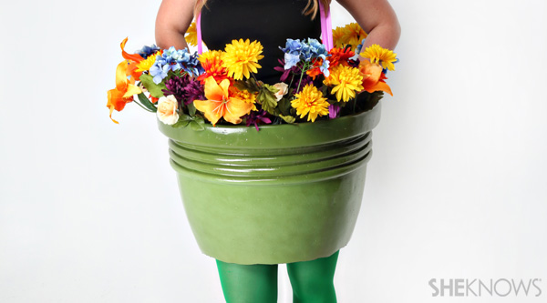 Flower pot: put on flower pot
