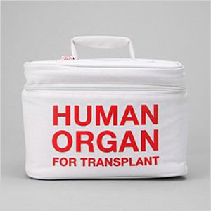 Human organ lunch box