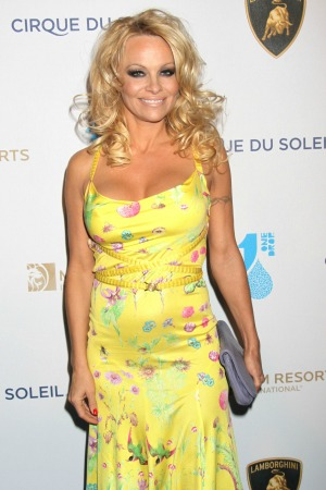 Pamela Anderson posted a paparazzi picture of herself on Twitter on ...