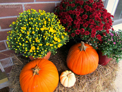 Fall porch decor: A touch of nature