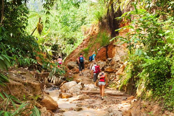 Cameron Highlands hiking guide
