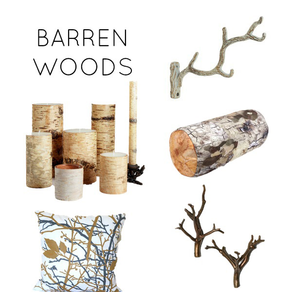 Barren woods