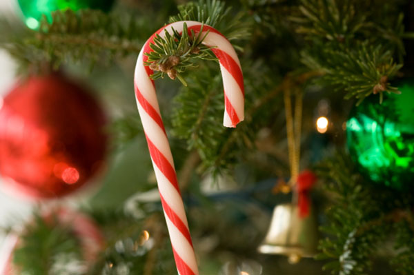 Candy canes on the tree | Sheknows.com