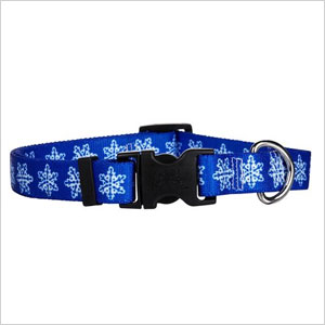 Snowflake cat collar | Sheknows.ca