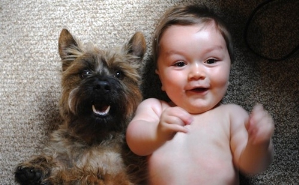 Kids and puppies that make your heart melt
