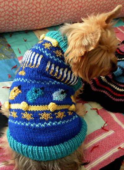 Hanukkah dog sweater