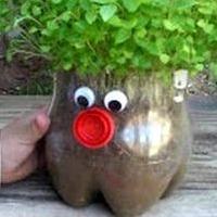 Plastic bottle plant