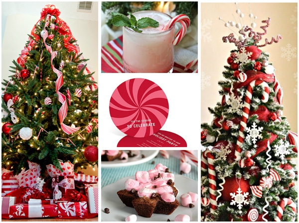 Peppermint delight Christmas theme