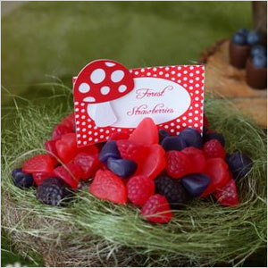 Forest berries snack | Sheknows.com