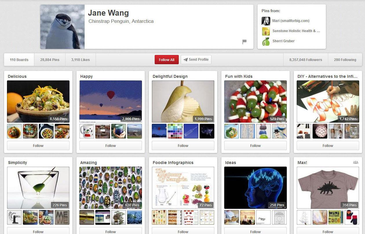 Pinterest Moms- Jane Wang