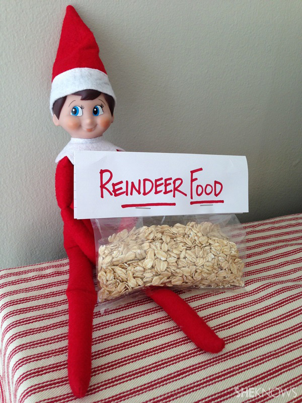 elf with reindeer food